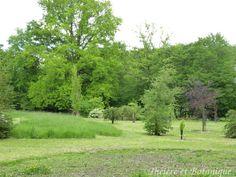jardin de Sérigny, tonte des pelouses