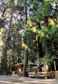 Takachiho Shrine.