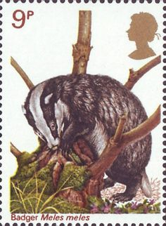 British Wildlife 9p Stamp (1977) Badger