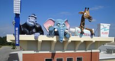 Giant Animals at Children's Dentist by Imagination Dental Solutions