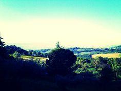 Countryside Panorama