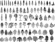Baixar - Silhuetas de árvore — Ilustração de Stock #1998223