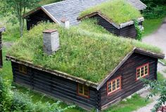 Traditional Norwegian home - love the grass roof. Saw these in Norway, older houses.