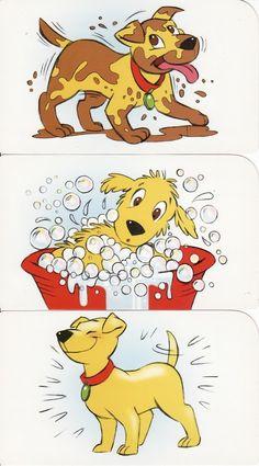 logische volgorde, hond wassen