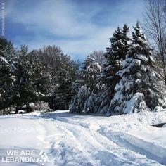LEBANON, SNOW EVERY WHERE
