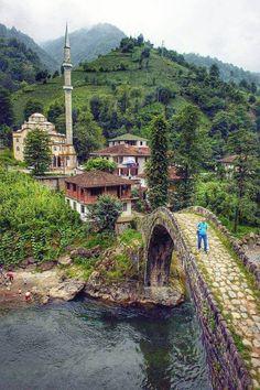 Rize, Turkey, green nature, green landscape, stone bridge, river