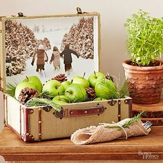 Make a modern cornucopia by piling Granny Smith apples, pine cones and greenery in a vintage suitcase. Double the visual impact by using the open suitcase top as a frame for your favorite winter photograph; just use double-sided tape to secure the image in place.