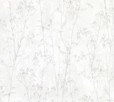 Cordelia Off-White Floral Silhouettes Brewster Wallpaper Wallpaper Brewster Grays Neutrals Floral & Plants Wallpaper Modern Classics Wallpaper, Non Woven, Easy to clean , Easy to wash, Easy to strip Plant Wallpaper, Flower Background Wallpaper, Kitchen Wallpaper, Flower Backgrounds, Textured Background, Classic Wallpaper, Grey Wallpaper, Wallpaper Roll, Pattern Wallpaper