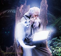 Magic is a cornerstone of fantasy. A good place to start when creating a magic system is to ask yourself some questions about how the magic works. Knowing the answers to the following questions is...