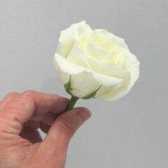 Rose Boutonniere - Easy Wedding Flower Tutorials
