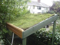 living green roof bike shed... or shelter, which is even better