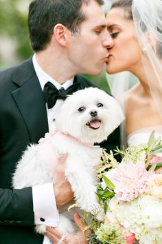 This pup is just toooo cute! See the wedding on SMP, here: http://www.StyleMePretty.com/2014/05/28/elegant-renaissance-blackstone-hotel-wedding/ Photography: KinaWicks.com