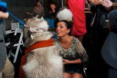 Paws for the Cause Event Venue Event Venues, Corporate Events, Unique Weddings