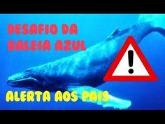 Desafio da Baleia Azul | Alerta aos pais | iloveluly - YouTube
