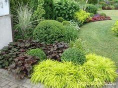 A small but roomy garden;) – page 80 – Garden forum – Garden: - Modern Front Garden Landscape, Front Yard Landscaping, Lawn And Garden, Garden Beds, Landscape Design, Back Gardens, Outdoor Gardens, Formal Gardens, Garden Forum