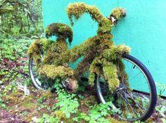 Bike left out in Oregon