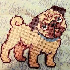 Pug dog hama beads by karypao_9008
