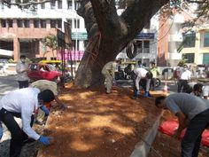 Our team at My Fortune, Bengaluru contributing towards the Swachh Bharat Abhiyan.