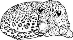 Free Printable Cheetah Coloring Pages