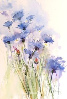 Cornflowers and daisies easy watercolor, watercolour tutorials, watercolor flowers, watercolour painting Watercolor Cards, Watercolor Flowers, Watercolor Paintings, Flower Paintings, Watercolors, Easy Watercolor, Painting Flowers, Watercolour Tutorials, Water Color Painting Easy
