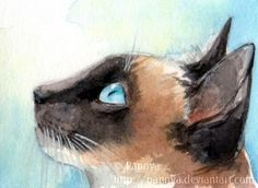 Seal-point Siamese cats have the most adorable colours, don't you think? ~Watercolour and gouache ACEO = Art Cards, Editions and Originals, Curious Siamese ACEO Siamese Cat Tattoos, Siamese Cats, Cats And Kittens, Cat Wallpaper, Wallpaper Ideas, Cat Urine, Super Cat, Cat Sleeping, Cat Crafts