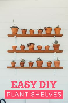 DIY OUTDOOR GARDEN SHELVING