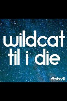 Always a Wildcat