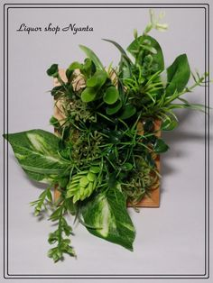 まるで小さな森のようにたくさんの種類のフェイクグリーンをおしゃれに額におさめました♪ 写真たてのように置くことも壁に掛けて飾ることもできます。 ◎日当たりの良... Planting Succulents, Potted Plants, Indoor Plants, Flower Frame, My Flower, Flowers, Moss Wall, Houseplants, Wall Sticker