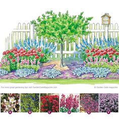 Plant these pollinator magnets! | Garden Gate eNotes