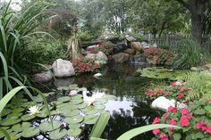 Water Garden by Aquascape