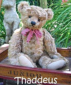 Mary George Bears