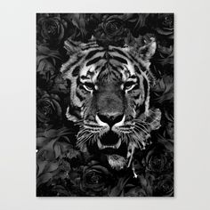 Buy FLOWERS 9 - BLACK ROSE TIGER Canvas Print by boxfox. Worldwide shipping available at Society6.com. Just one of millions of high quality products available.   #art #print #photoshop #wallart #artprint #modernart #astronaut #buy #surrealism #surrealistic #surreal #artwork Surreal Artwork, Buy Flowers, Canvas Prints, Art Prints, Astronaut, Surrealism, Originals, Modern Art, Photoshop