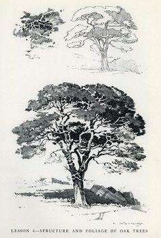 Pencil Broadsides: A Manual of Broad Stroke Technique: Theodore Kautzky, B&W Illustrations: Amazon.com: Books