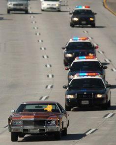 Police pulling us over for no reason Searching the car, like it's nigga hunting season