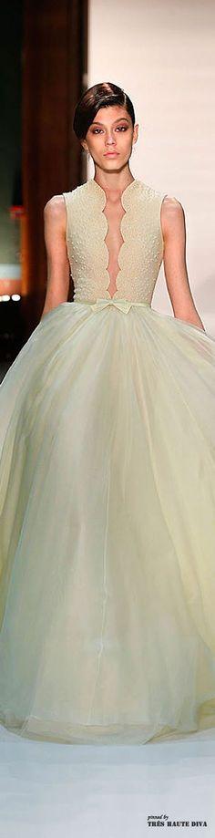 Georges Hobeika Spring 2014 Couture ♔ Runway http://pronoviasweddingdress.com