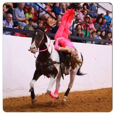 Trick riding, fitness, horse, Cowgirl, Leah Self of the Dynamite Dames. Follow them on FB and go to www.dynamitedames.com for their schedule