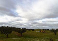 Paisaje en Parque Nacional do Guadiana.Fickr ¡Para compartir fotos!