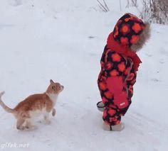 gato y niño
