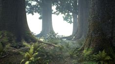 Name:  MAWI_ForestTreeCollection_wip9_small.jpg Views: 1092 Size:  813.5 KB