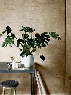 Increase Some Modern Day Design For Your Front Room With Art Deco Coffee Tables Urban Interior Design, Interior Design Inspiration, Interior Styling, Deco Furniture, Furniture Layout, Sweet Home, Workspace Inspiration, Green Rooms, Flower Boys