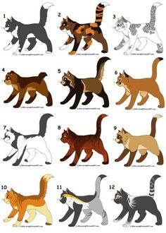 1 is whitebelly. 2 is dapplepelt. 3 is silvertail. 4 is shortear. 5 is raccoonpelt. 6 is caracalwhisker. 7 is yelloweyes. 8 is amberstripe. 9 is brownleg.