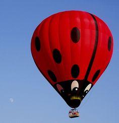 Hot Air Balloons! #vacation #adventure #hotairballoon #orlandoballoon #ladybug