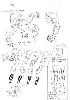 アートの話 No.001「あやしい美術解剖図」 | 美術裏話 | 活動報告書 | CAPCOM:シャドルー格闘家研究所