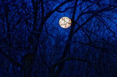The Full Moon in Appleton Wisconsin