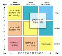 Nine Leadership Development Strategies for a Performance and Potential Matrix-self improvement, where do I fall?