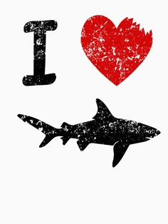 Shark Pictures, Shark Photos, Shark Gif, Save The Sharks, Types Of Sharks, Megalodon, Shark Party, Great White Shark, Ocean Creatures