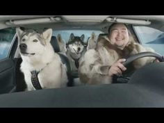 All the dogs in this Superbowl commercial are fed with Inukshuk Professional Dog food. Pretty cool