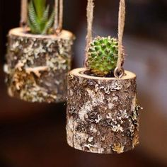 House Warming Gift Planter Hanging Planter Indoor Rustic Hanging Succulent Planter Log Planter Cactus Succulent Holder Gifts for HerChristmas Party Favor Hanging Planter Indoor by WoodlandFeverAmazing Hanging Air Plants Decor Ideas 47 image is part o Indoor Planters, Diy Planters, Hanging Planters, Diy Hanging, Indoor Cactus, Planter Ideas, Plants Indoor, Hanging Baskets, Tall Cactus
