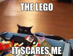 55 Best Lego Memes Images Lego Memes Lego Memes