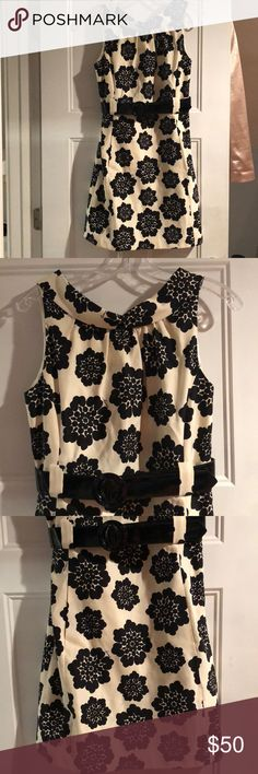 Milly Dress Beautiful belted dress with side pockets excellent condition Milly Dresses Mini
